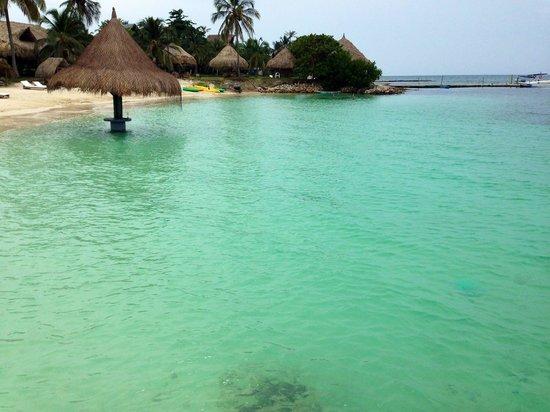Punta Faro : Playa