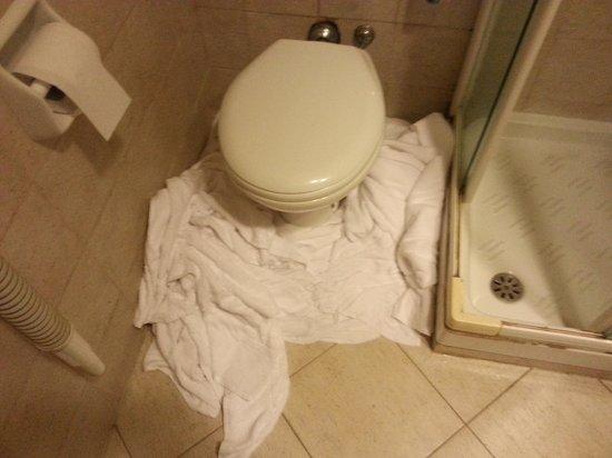 Hotel Center 2: Leaking toilet