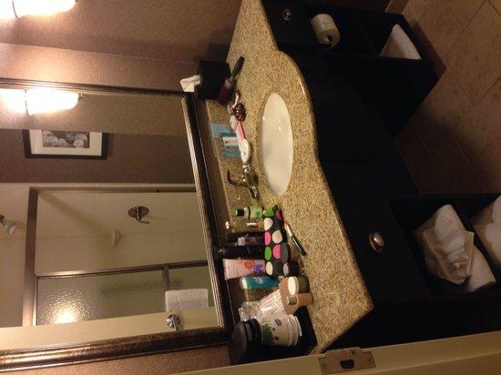 Hampton Inn Columbia - Downtown Historic District: Great bathroom