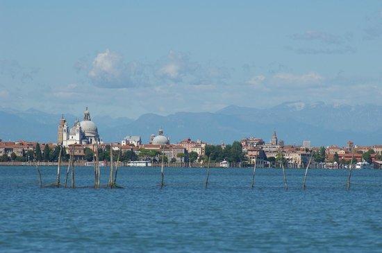 Il Bragozzo Local Boats Tours: Venice from Lagoon