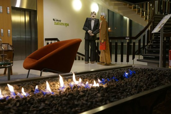 Icelandair Hotel Reykjavik Natura : cheminee