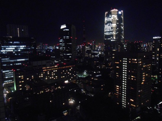 Ana Intercontinental Tokyo: view from my room