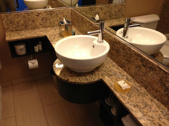 Crowne Plaza Chicago O'Hare: What a sink!