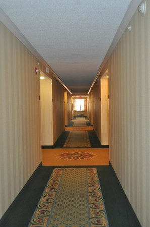 Holiday Inn Express Hotel & Suites Universal Studios Orlando: Custo x Beneficio