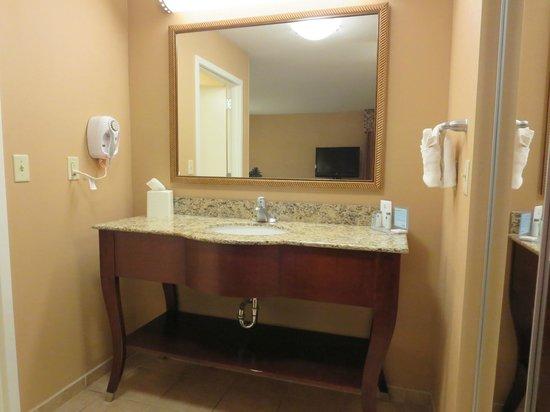Hampton Inn Moab: Bathroom Vanity