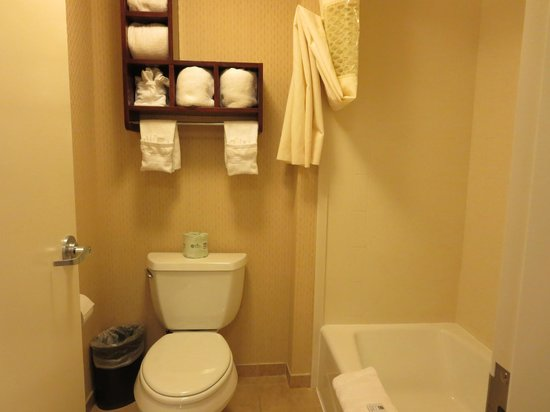 Hampton Inn Moab : Bathroom