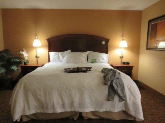 Hampton Inn Moab: King Studio Room