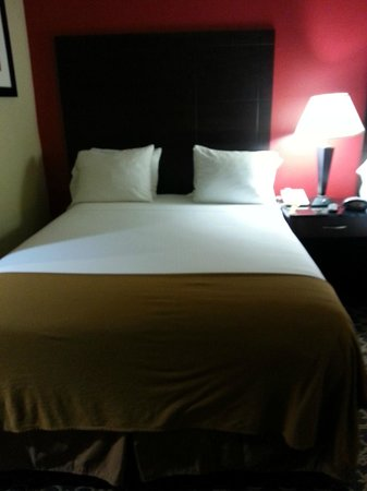 Holiday Inn Express & Suites Columbia Downtown: Well-made Bed