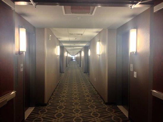 Wyndham Garden Buffalo Williamsville: Very long well lit hallways