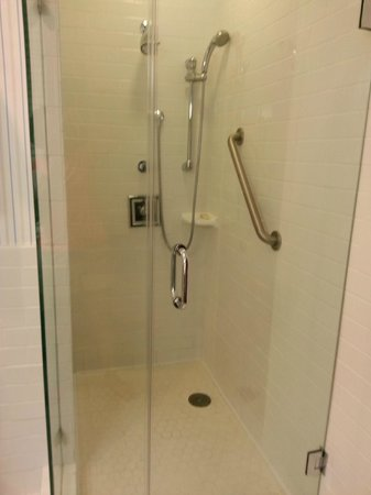 Sheraton Columbia Downtown Hotel: Glassed stall shower-501