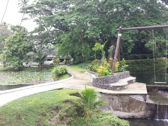 Koro Sun Resort and Rainforest Spa: In the gardens on the way to bures