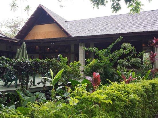 Koro Sun Resort and Rainforest Spa : Main dining / bar area