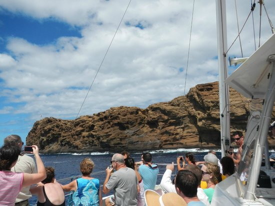 Four Winds II Snorkel at Molokini: The back side of Molokini which is very different
