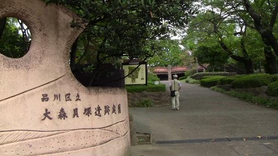 Omori Midden Site Park: 公園としてよく整備されてます:開館時間季節で変わる