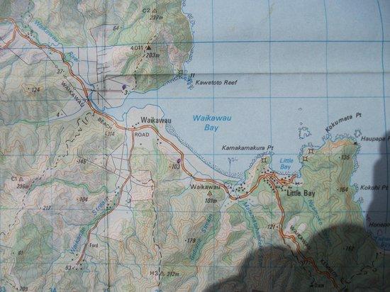 DOC Waikawau Bay Campsite : topog map