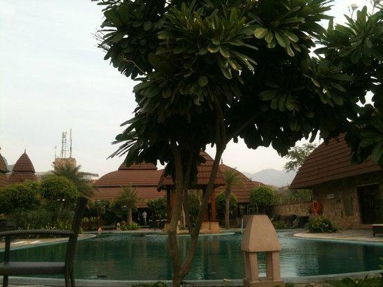 Ananta Spa & Resorts : Very Green Area