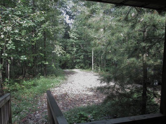 Big Pine Retreat : View from the front porch.