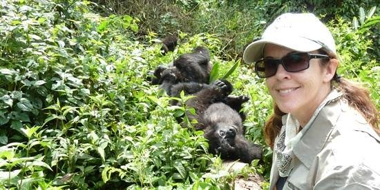 Nkuringo Walking Safaris: Gorillas!
