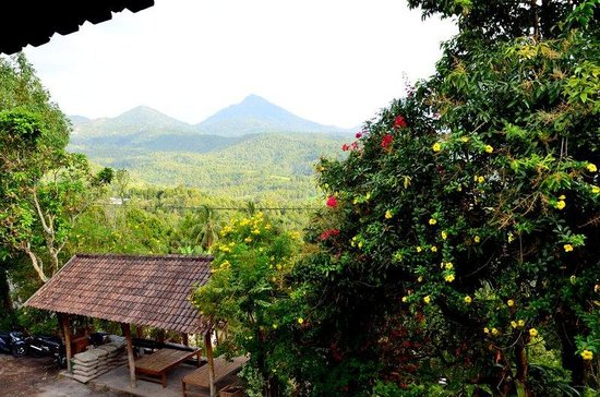 Puri Lumbung Cottages: View