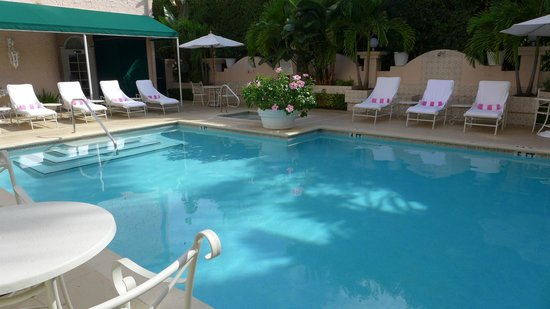 The Chesterfield Palm Beach: Pool