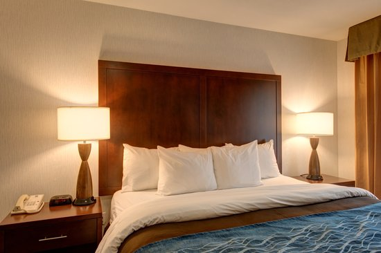 Comfort Inn & Suites Portland International Airport: King Standard