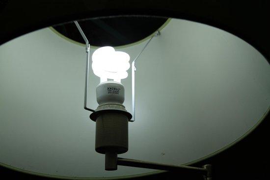 Dar Sultan: Energy saver bulb
