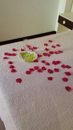 Hotel La Bastida: Petalos de rosa en la habitacion a la llegada.  Increible