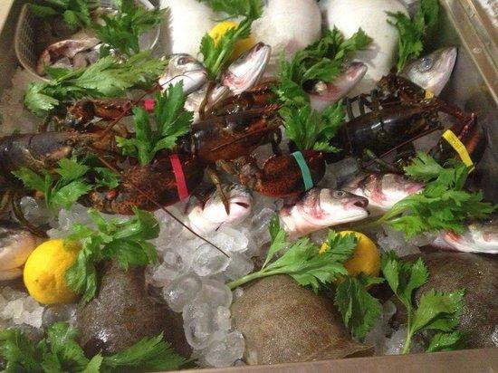Ristorante Casa Mia : Pesce fresco tutti i giorni!