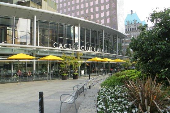 Exterior of the Cactus Club Cafe