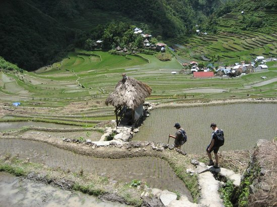 Tappiyah Falls: The rice terraces of Batad