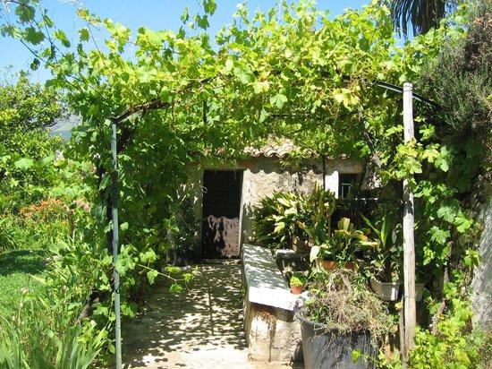 Hotel Mas de Vence : cabanon du jardin