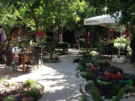 Dem-lik Cafe Bar: Main view at the café´s garden