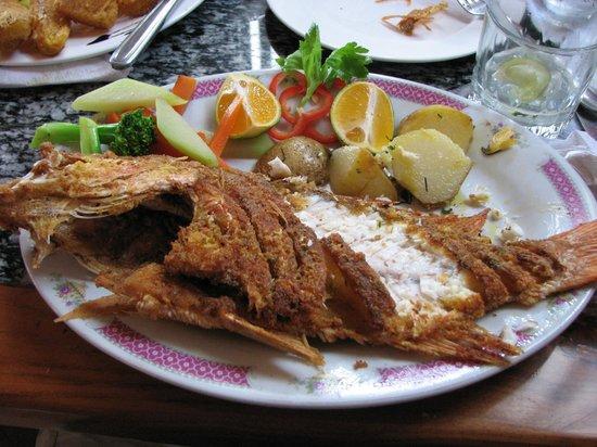 Restaurante and Sports Bar El Sol: snapper for dinner