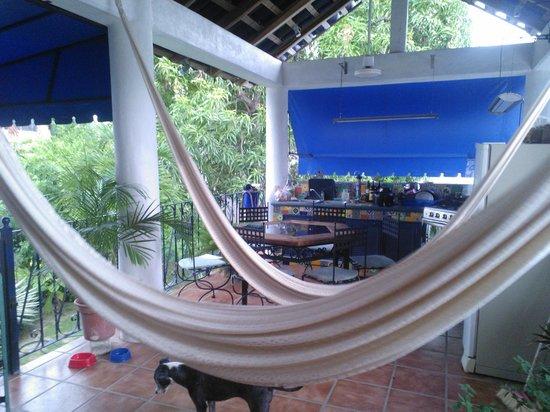 Casa Azul Puerto: Hammocks <3