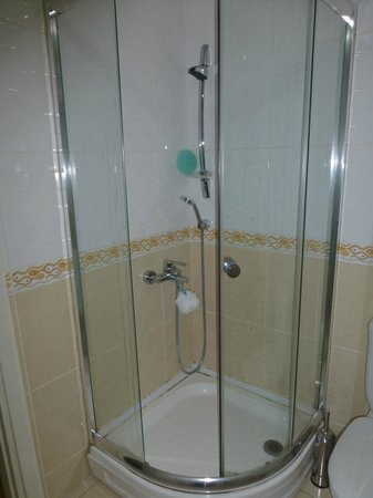 May Hotel Istanbul: Missing shower door!