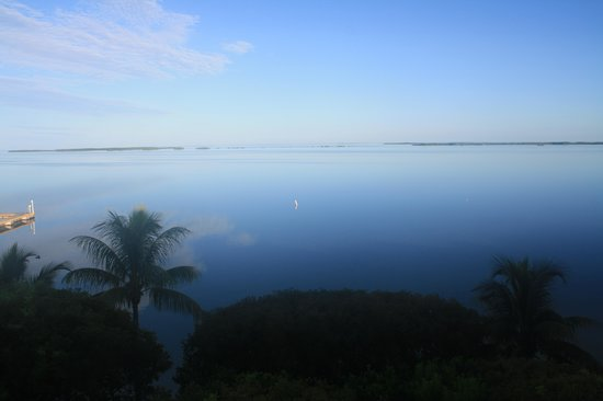 Hilton Key Largo Resort: calm water in morning