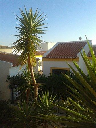 Costa D'oiro Ambiance Village: Widok z okna sypialni
