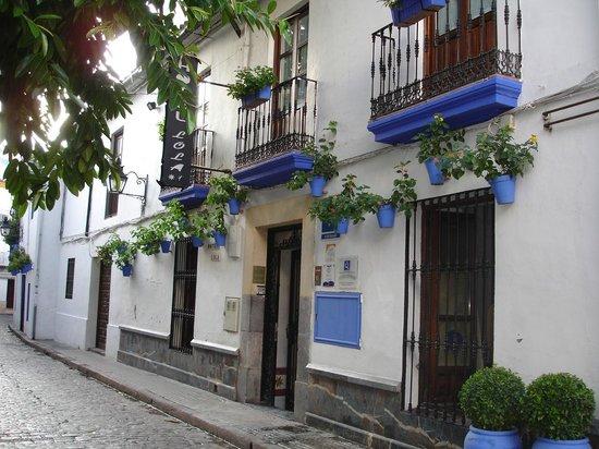 Jewish Quarter (Juderia): Alojamiento en La Judería