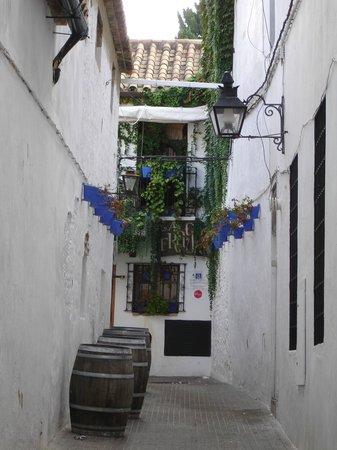 Jewish Quarter (Juderia): Callejuela a un bar en La Judería