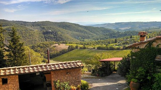 Borgo Ricavo : The lovely view from the house....