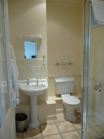 The Ivory Guest House : Spotlessly clean bathroom