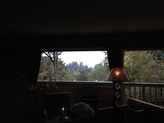Augusta House Bed and Breakfast: View looking out from family room area