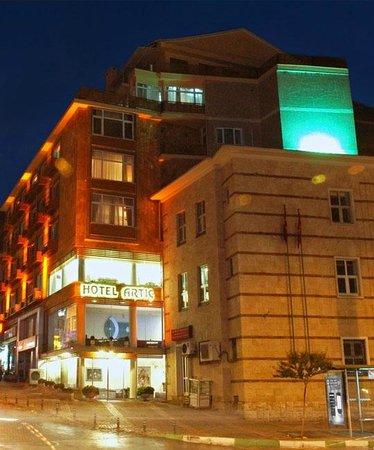 아르틱 호텔