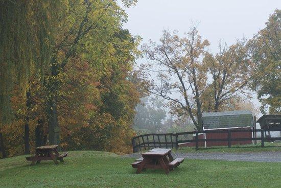 Pinegrove Family Dude Ranch: picnic area