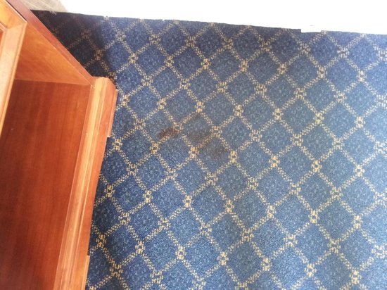 Rodeway Inn Miami: Blood Stain before they cleaned