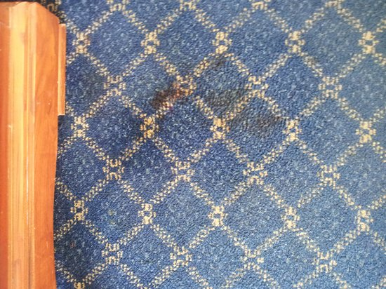 "Rodeway Inn Miami: Blood Stain After they ""cleaned"" with multi-purpose cleaner...wtf???"