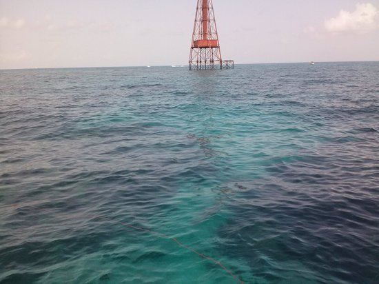 Starfish Snorkeling: Sombrero Lighthouse