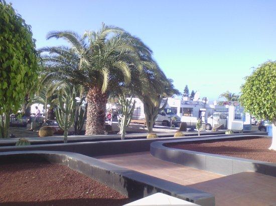 Ereza Apartamentos Los Hibiscos: view from terrace