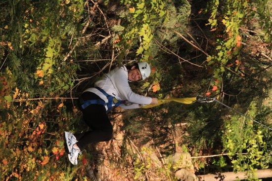 Alpine Adventures Outdoor Recreation : Ziplining through the trees!