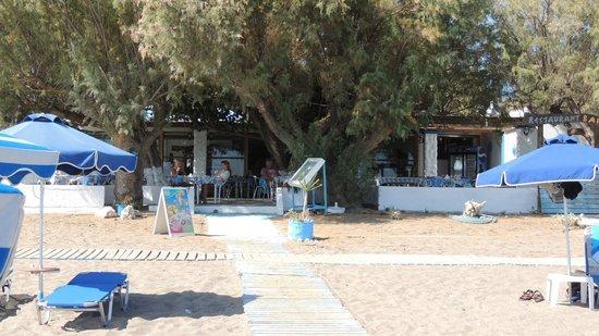 Monaxia : set fra stranden